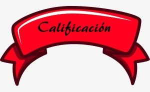 calificaciónblog2